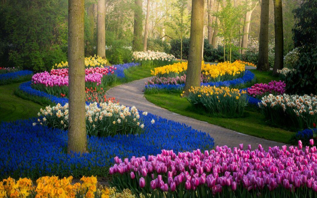Top 10 Gardens
